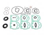 Прокладки двигателя для снегохода SKIDOO 600 500 SKANDIC SUMMIT MX-Z 09-711259 711259 420889924, 420889928, 420888584, 420893070, 420888580, 420888581, 420888582, 420888583