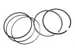 Поршневые кольца для квадроциклов Polaris RZR-1000  2205245 / 2204949