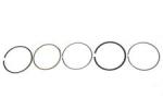 Поршневые кольца квадроцикла Polaris Sportsman 300 / 3089822