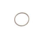 Кольцо пружина RAVE клапана Seadoo 420838253 420838255