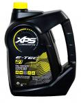 Синтетическое масло XPS для 2-тактных двигателей, 2T 3785 мл 779282 779127 293600133