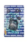 Комплект прокладок двигателя для квадроцикла Can-Am Outlander / Renegade / 811956 / 420684138 / 420684160