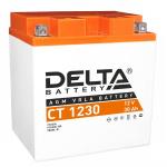 Аккумулятор для квадроцикла Delta CT 1230 YIX30L-BS
