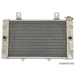 Радиатор для Yamaha Rhino 700 5B4-E2461-00-00 HDR-P-RHI